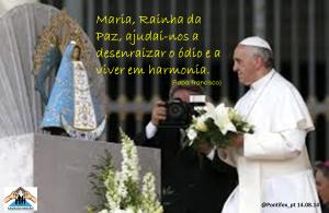 Papa Francisco 037